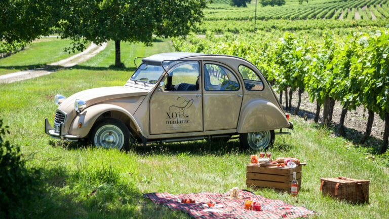 Discover the Cognac vineyards in a 2CV