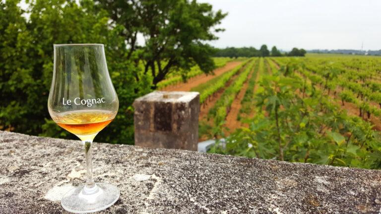 Découvrir le cognac avec Cognac Tasting Tour