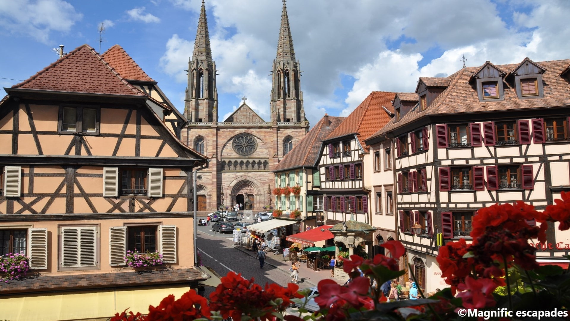 The essence of Alsace